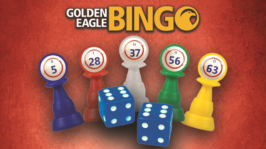 Bingo Fun & Games